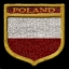 Polish Tanker CoD3