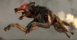 Hellhound new profel