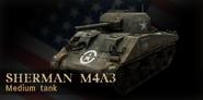 Sherman cod3