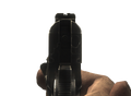 WaW M1911 Ironsights.png