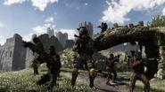 Squads Stonehaven CODG