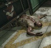 Sergei ist tot.