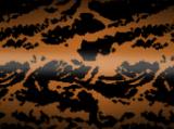 Tygrys - kamuflaż