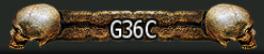 G36C2