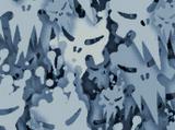 Skulls Camouflage