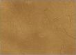 Dune Camo Icon BO4