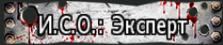 ИСО Экс