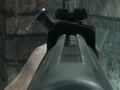 Gewehr 43 ADS BO.png