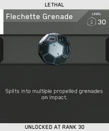 Flechette Grenade Unlock Card IW