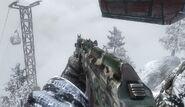 AK74u Woodland BO