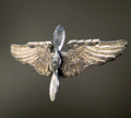 US Metal Wings CoD WWII