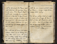 MariesJournal Entry4 2 ViralCampaign WWII