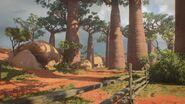 Madagascar View BO4