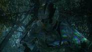Invisibility Cloaking AW