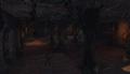 Błotnisty labirynt