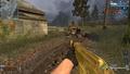 AK-47 Gold CoDO.png