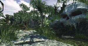 Escape From Zombie Island skull CoDO