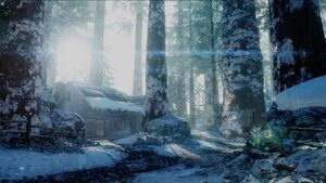 Redwood Snow menu icon BOIII