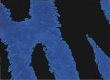 Blue Tiger Camo Icon BO4