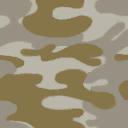 CoD4 Desert Camouflage