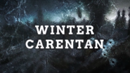 Winter Carentan Promo WWII