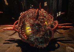 Мясной шарик