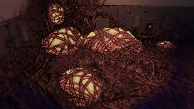 File:Egg-stra Devastation! CoDG.jpg
