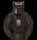 .44 Magnum ADS MW2