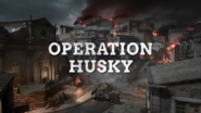 Operation Husky Promo WWII