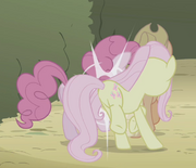Fluttershy jostling Pinkie Pie s02e01