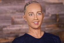 Human Roboid