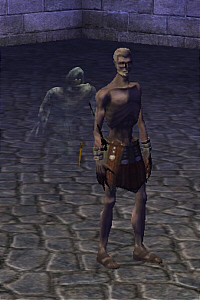 Necromancer | Dark Age of Camelot Wiki | FANDOM powered by Wikia