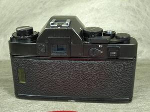 P7253428