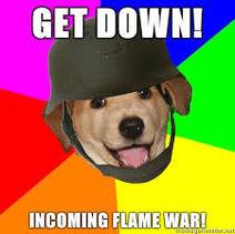 Advise dog