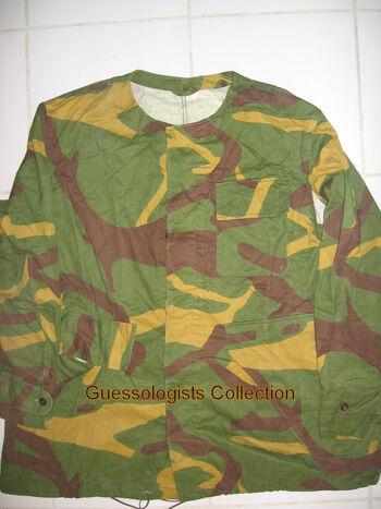 Yugoslavian - branch
