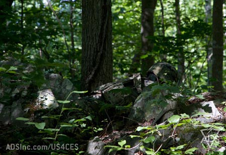 US4CES   Camouflage Wiki   FANDOM powered by WikiaUs4ces Woodland