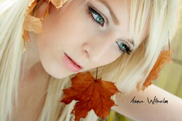 Herbst by acoach