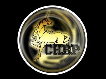 CHBP2013 2