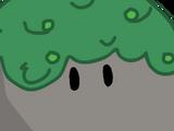 Bouldery