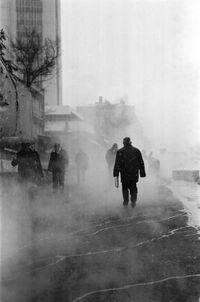 Fog by necayev