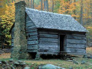 Cabin council