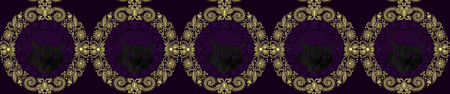Panther theme for bird