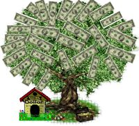 Money tree5
