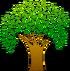 Tree-hi