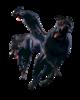 Resident-evil-6-leon-renderresident-evil---zombie-dogs---render-by-allan-valentine-on-deviantart-gbkeqrbi