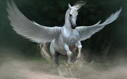 Pegasus-horse