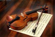 Zayden Violin