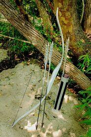 Nikita's-Silver-Bow-and-Arrow-