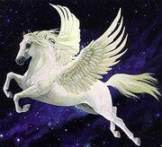 Ruth's Pegasus