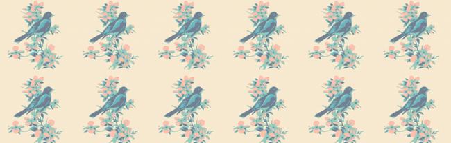 Sparrowss